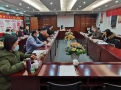 中国灯都商协会联盟2020年工作总结会议成功召开