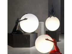 室内灯饰滚塑灯罩产品和非标户外灯滚塑产品,需要的联系15115301268
